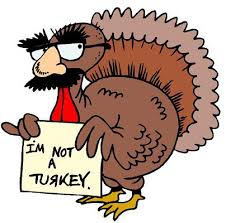 turkey-not-a