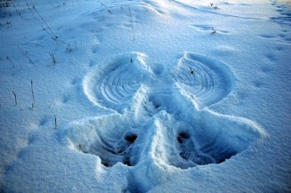 snow angel 3
